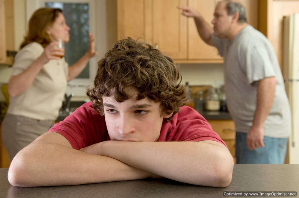 Understanding Violence in a Household